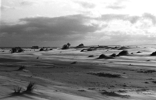 Eco paradise Cabo Polonio in Uruguay, 15 years ago (Photo Ricardo Antunez)