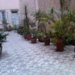 bb garden