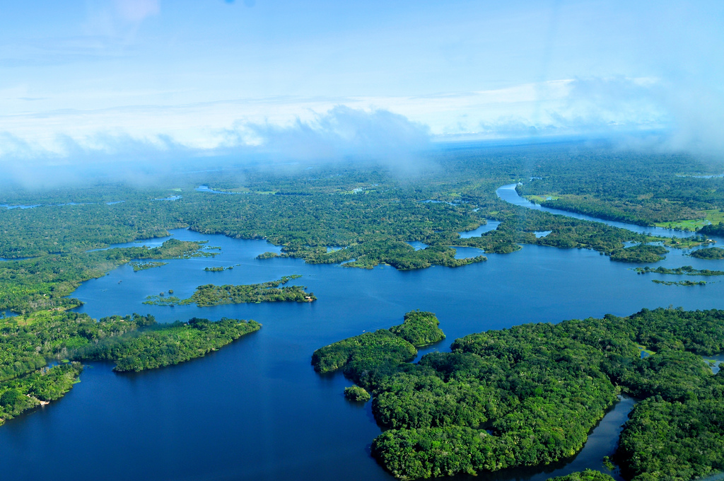 amazon-rainforest-panoramic